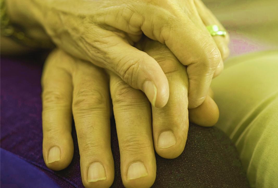 Os limites e responsabilizações legais na relação entre a família e os idosos.